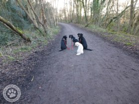 jan06walkies4